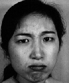 Japanese Facial Expressions 52